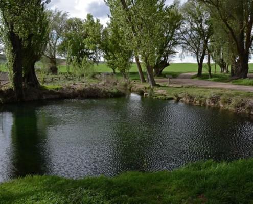 La Fuente Redonda